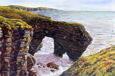 Westray Cliffs, Orkney