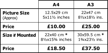Table of Print Sizes & Prices